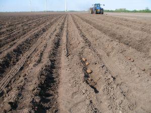 plowed_field.jpg